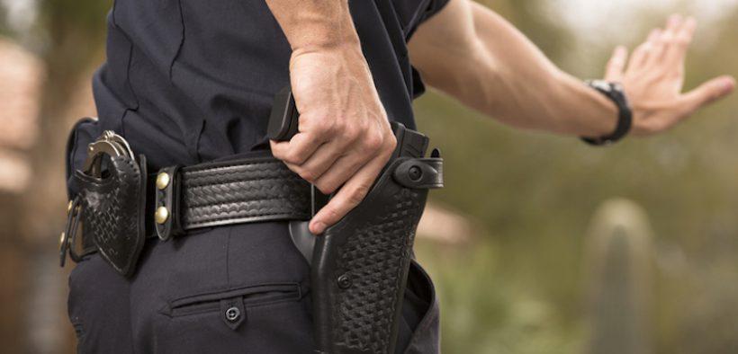 RF Cops, Gun